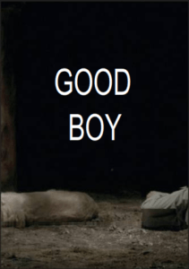 Good Boy - Festival du film Insolite Rennes le Chateau 2016