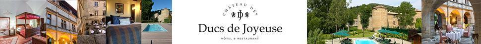 https://www.chateau-des-ducs.com