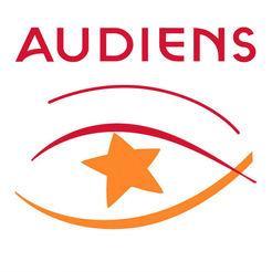 Audiens - Festival Insolite Rennes le Château